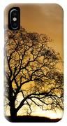 Tree At Golden Sunrise IPhone Case