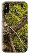 Tree Grows From Rock Outcrop IPhone Case