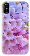 Tree In Bloom IPhone Case