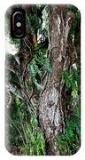 Tree In Kauai IPhone Case