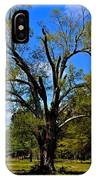 Tree In Rock Hill IPhone Case