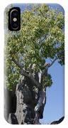 Tree In The Tsingy De Bemaraha Madagascar IPhone Case