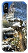 Tree In The Way IPhone Case