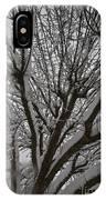 Tree Limb 4 IPhone Case