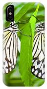 Tree Nymph Butterflies IPhone Case