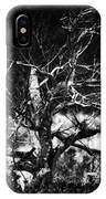 Tree Of Darkness IPhone Case
