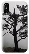 Tree On The Blue Ridge Parkway IPhone Case