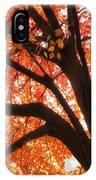 Tree Orange Blast IPhone Case