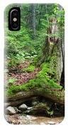 Tree Stump - White Mountains New Hampshire IPhone Case