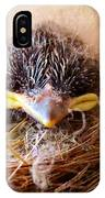 Tree Swallow Fledglings IPhone Case