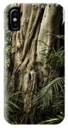Tree Trunk And Ferns IPhone Case