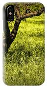 Tree Trunks In A Peach Orchard IPhone Case