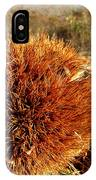 Tree Urchin IPhone Case
