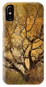 Tree Without Shade IPhone Case