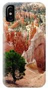 Tree's Eye View IPhone Case