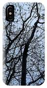Trees From Below IPhone Case