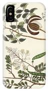 Trees From Hot Countries IPhone Case