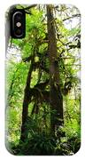 Trees In The Hoh National Rain Forest IPhone Case