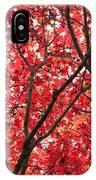 Trees Of Autumn IPhone Case
