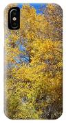 Trees Of Color IPhone Case
