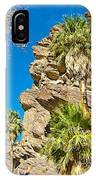 Trees On South Side Of Andreas Canyon In Indian Canyons-ca IPhone Case