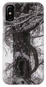 Trees Under Snow IPhone Case