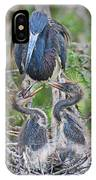 Tri-colored Heron With Chicks IPhone Case