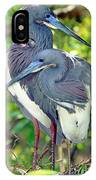 Tricolor Heron Adults In Breeding IPhone Case