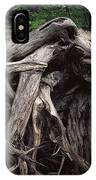 Troots Of A Fallen Tree By Wawa Ontario IPhone Case
