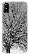 Tropic Winter IPhone Case