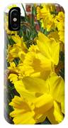 Trumpeters Of Spring IPhone Case