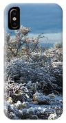 Tucson Covered In Snow IPhone Case
