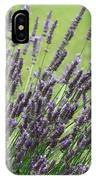 Tuilieres Lavender IPhone Case