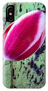 Tulip Against Green Wall IPhone Case