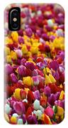 Tulip Bud Farm Portrait IPhone Case