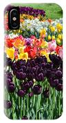 Tulip Field 1 IPhone Case