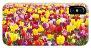 Tulip Flower Festival Art Prints Spring IPhone Case