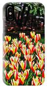 Tulip Stripe Garden IPhone Case