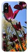 Tulip Tango IPhone Case