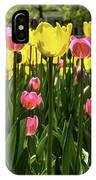 Tulip Time Pink Yellow Black Beauty IPhone Case