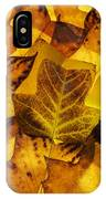 Tulip Tree Leaves In Autumn IPhone Case