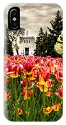 Tulips And Building IPhone Case