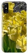 Tulips At Dallas Arboretum V23 IPhone Case