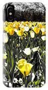 Tulips At Dallas Arboretum V26 IPhone Case