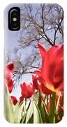 Tulips At Dallas Arboretum V62 IPhone Case