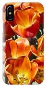 Tulips At Dallas Arboretum V80 IPhone Case