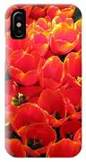 Tulips - Field With Love 28 IPhone Case