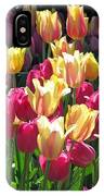 Tulips - Field With Love 35 IPhone Case