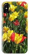 Tulips - Field With Love 49 IPhone Case