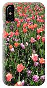 Tulips - Field With Love 55 IPhone Case